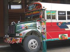 Panama City Bus