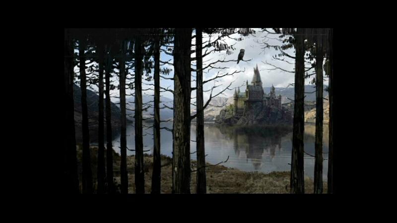 castillo viejo y el sapito