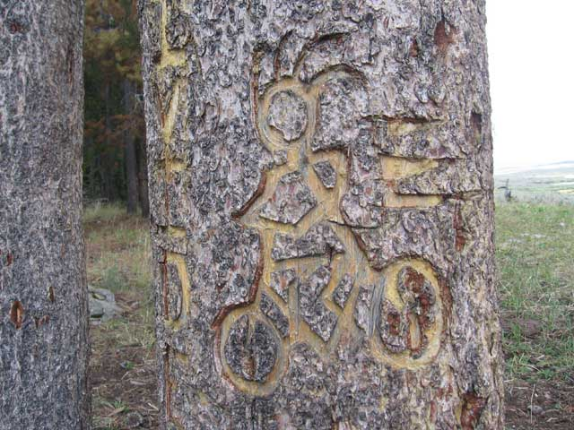 'ride the divide' carving close-up