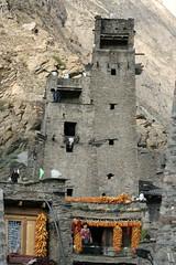 Tower in Taoping Village