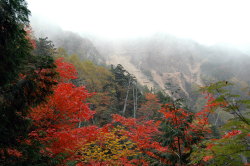 autumn at Mt. Onsen-dake