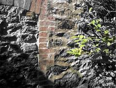 mur, 181005