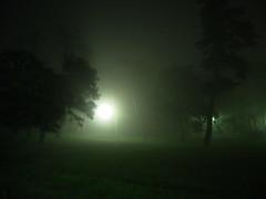 a dense fog.