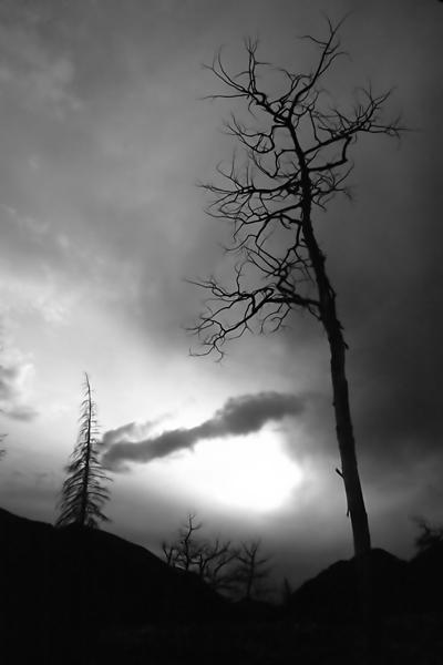 storm brewing-1