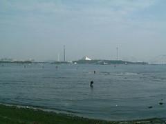 海の公園、向こうは八景島