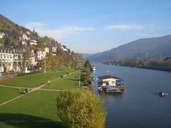 O Neckar en Heidelberg