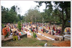 Devotees at Vanabhojan ready for Sambradan