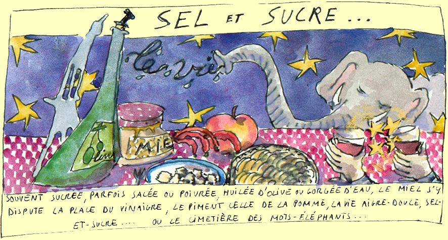 seletsucre3