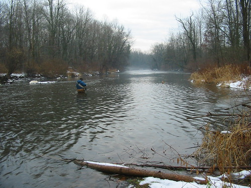 Rogue River steelhead weather