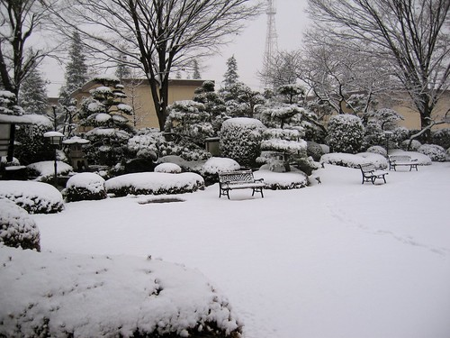 japanese garden in the snow