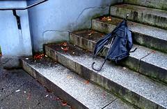 The tragic end of an umbrella.