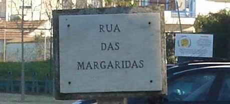 rua das margaridas