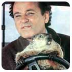 Marmota poniendo cara de Bill Murray