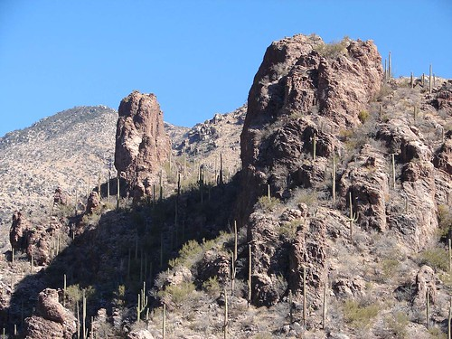 Feb 06 Tucson 059