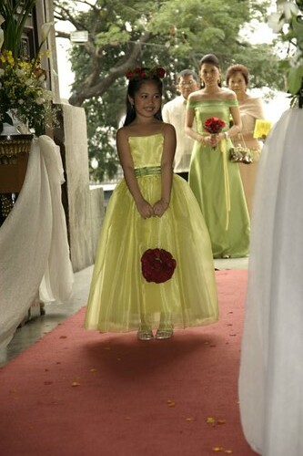 clarice flower girl dress