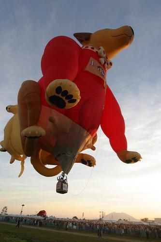 10th Balloon Fiesta (Feb. 12, 2006) - 32