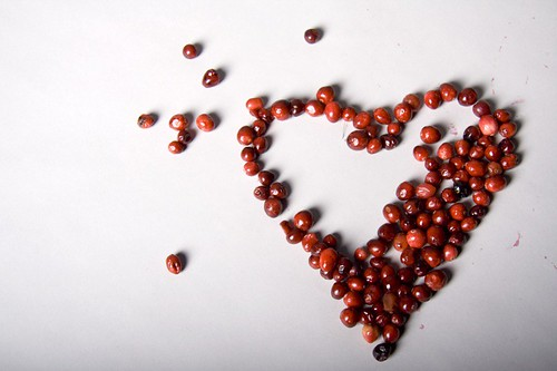 rotting cranberry heart