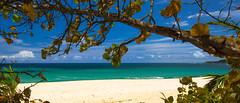 Playa Los Tubos, Manati, Puerto Rico... photo by Louis O'Halloran