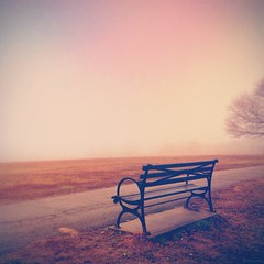 A Bench With No View. (Explore) photo by Mick Canon