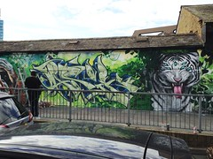Jasik in the jungle with tha tiger style photo by brave one