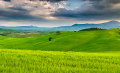 Green fields in Val D'Orcia (explored) photo by Aljaž Vidmar | ADesign Studio