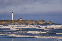 Point Arena Lighthouse (Explored) photo by buffdawgus