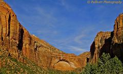 Zion National Park, Utah, USA 6 photo by PULLKATT CURRENTLY IN TURKEY