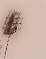 Guitar Head photo by Bob R.L. Evans