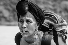 Awesomely strong... photo by Syahrel Azha Hashim