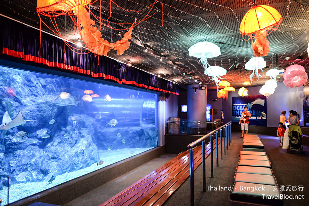 Siam Ocean World Bangkok 54