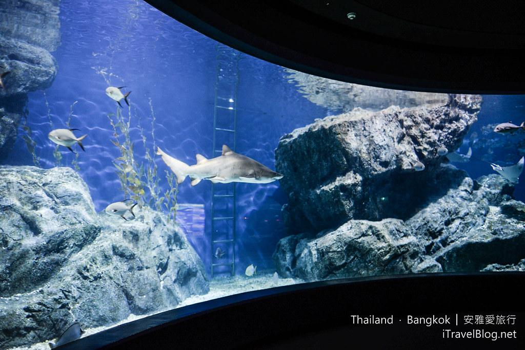 Siam Ocean World Bangkok 53