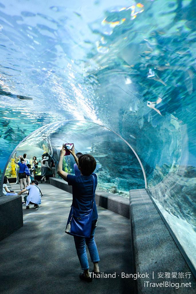 Siam Ocean World Bangkok 45