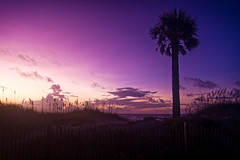 Tybee Island photo by Marianne Venegoni