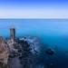 Ibiza - Reverse Skydiving