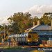 2112 / 20xx / 2116, North Adelaide