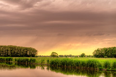 Lightning Tree And Distant Rain photo by Alfred Grupstra Photography