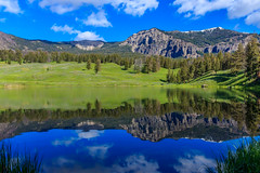 Trout Lake, Yellowstone National Park, USA photo by Always Shooting