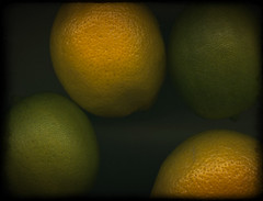 Two limes and two .. photo by Bob R.L. Evans