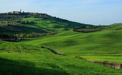 Carpet  綠毯  ~ Pienza, Val d'Orcia, Tuscany  ( Toscana ) , Italy  托斯卡尼,歐查谷地(奧爾恰谷),皮恩札  ~ photo by PS兔~兔兔兔~