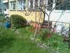 33895564980_a15c1b4b7f_t