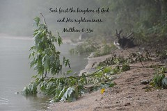 Matthew 6:33a photo by Sapphire Dream Photography