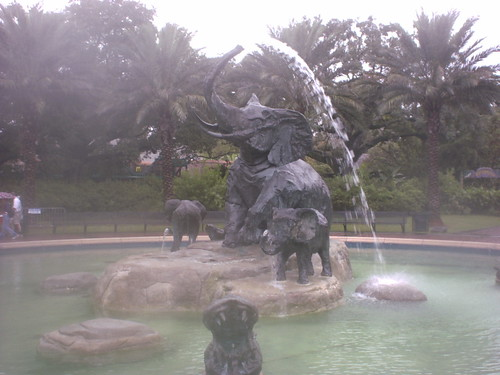 Audobon zoo 1