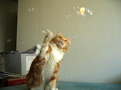 Peach et des bulles