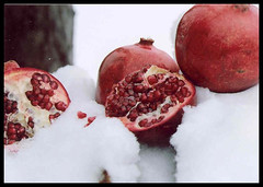 Pomegranates - from Art Is Joy