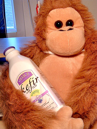 Kefir Monkey