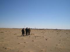 Rambling in desert