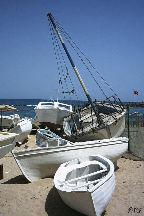 boats_may05