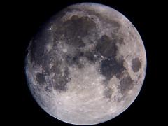 Luna CRW_3607