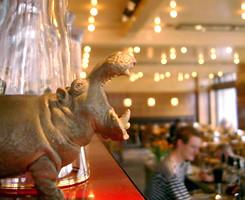 Café Belga: stijlvol en draadloos