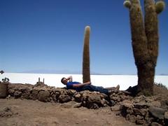 Salar Trip - 47 - Matt cactus cock